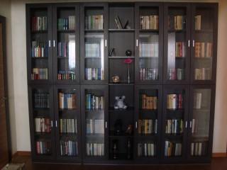 Удобный книжный шкаф. Выполнен: корпус из ЛДСП, фасады(дверки) из рамочного профиля МДФ, вставки - полированное стекло.